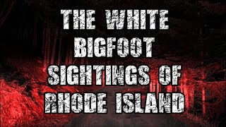 THE WHITE BIGFOOT SIGHTINGS OF RHODE ISLAND!