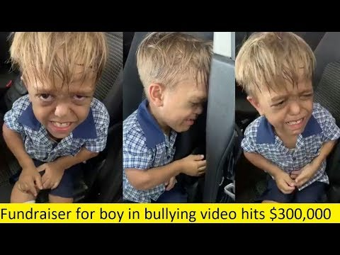 Comic Brad Williams raises $300000 to send bullied boy to ...