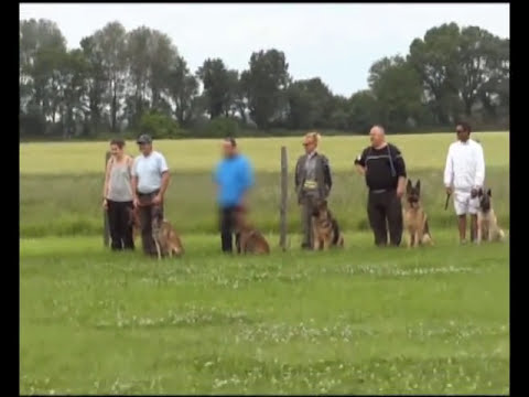 club canin montelier 26