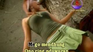 disco music BANYUWANGI (ilang welase)