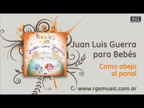 Juan Luis Guerra para Bebés – Como abeja al panal