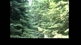 Paul Freeman Bigfoot video audio clue