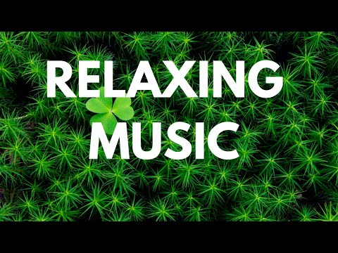 2 Hours of Calm Melody with Jesus , Study Music , Relaxing Celtic Music: Beautiful Music