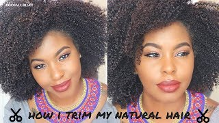 How I Trim My Natural Hair || No Heat || Easy Tutorial