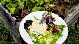 Celery Remoulade with Chef Alex Gunuey - Cultured&Cured Quarantine Edition