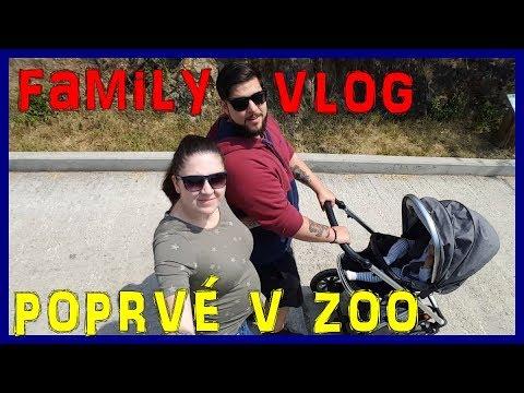 Family vlog #9 - Poprvé s miminkem v zoo