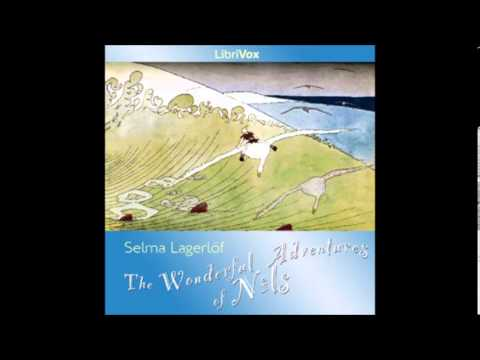 The Wonderful Adventures of Nils by Selma Lagerlöf - 41/45. Vermland and Dalsland