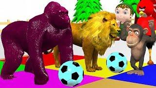 Wild Animals Singel Play Game Change Animals Colors For Kids - Cartoon Kidzee Rhymes