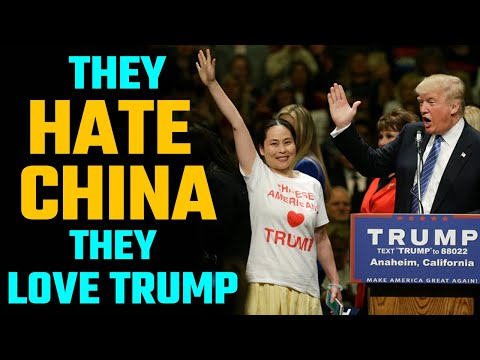Why Vietnamese Americans are rooting for Trump and how they can impact the US elections