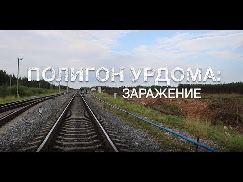 looking for arkhangelsk region with the phone