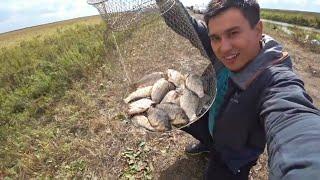 Зачётные Караси! Рыбалка уходящего лета 2019! Казахстан!