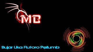 Download Mp3 Bujar Uka Fluturo Pellumb