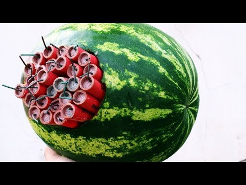 FIRECRACKERS VS WATERMELON COMPILATION VIDEOS