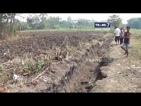 Warga Desa Karo Belah Temukan Situs Majapahit
