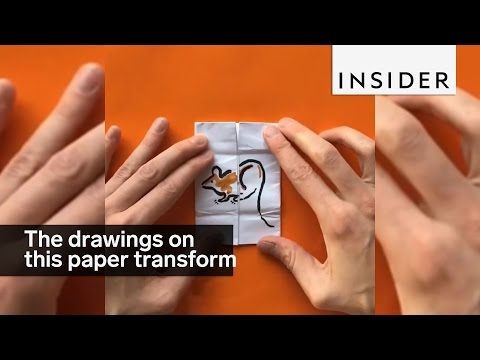Drawings On This Paper Transform