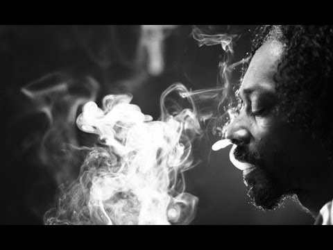 Snoop Lion -REINCARNATED (Full Album With Interviews)