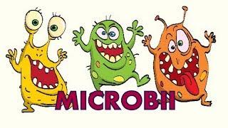 bacterii nonpatologice