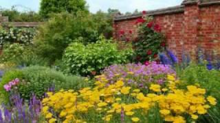 в мире садов и цветов.wmv(Красивое видео из мира растений ,а также оранжерея цветов в Гонконге., 2010-02-05T17:38:40.000Z)