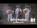 LOS HUARACHES Calixto Nopalitos ESTRENO 2017