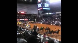 Black rodeo Shreveport louisiana