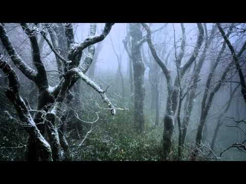 Sviatoslav Richter - Schumann - Waldszenen (Forest Scenes), Op 82