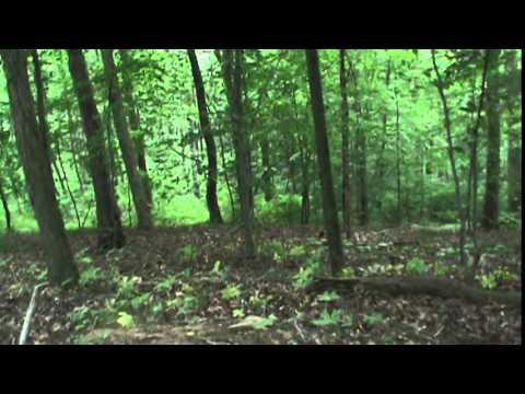 strange noises at dillon state park  (turn sound up at 3:20-5:25)