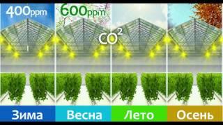видео Агрокомплексы