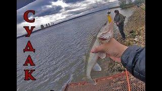 Рибалка в центрі міста Рига на джиг і дроп шот.