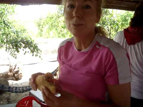 Picnic Lunch in Tra Vinh