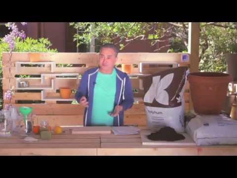 ShoWooD - πράσινες αποστολές Επεισόδιο 1-(2)