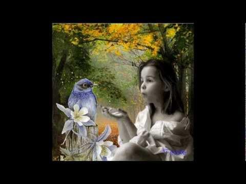 Marie Myriam - L'oiseau et L'enfant paroles lyrics karaoke