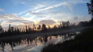 Provfiskar Svartsjön