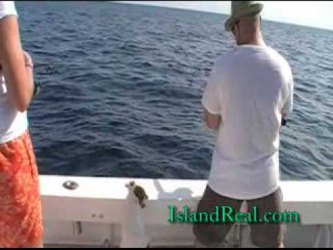 deep sea fishing off anna maria island youtube