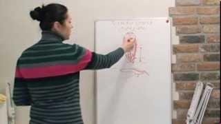 Форма ногтей миндаль: техника опила (теория) - видео-урок Натальи Голох