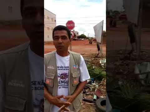 ENTREVISTA: SERVIDOR DA SAÚDE FAZ ALERTA CONTRA O MOSQUITO DA DENGUE