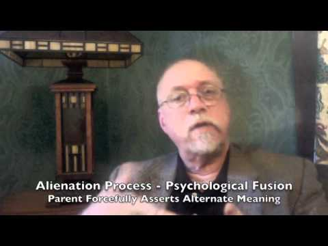 2 Parental Alienation: Treatment - Nature of Shared Subjective State
