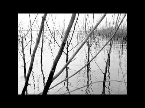 Trailer | Paraguay Remembered | Dominique Dubosc