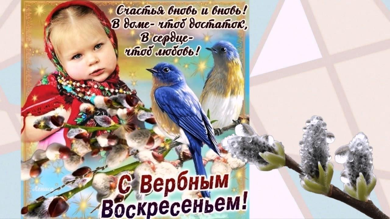 Снегирь новым, поздравление с вербным воскресеньем открытка