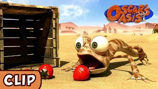 Oscar\'s Oasis - Bad Berries | HQ | Funny Cartoons