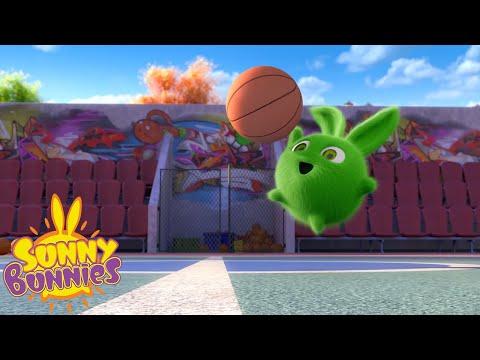 SUNNY BUNNIES - Score A Basket   Season 2   Cartoons For Children