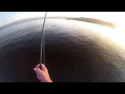 FLY FISHING FOR (SEA) BASS BY SIGHT - IRELAND