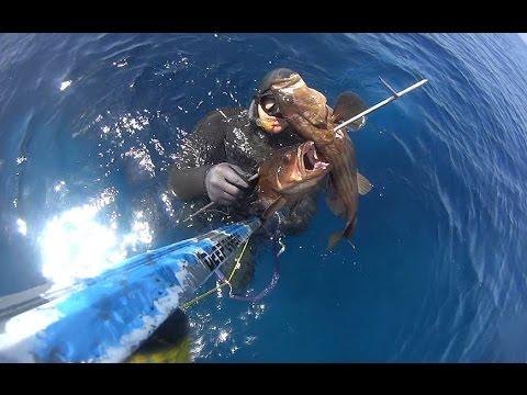 Spearfishing   SeaDevil Summer I