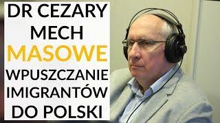 Dr Cezary Mech: Wpuszczanie masowo imigrantów do Polski to zaprzeczenie planu diagnozy Morawieckiego