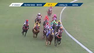 Vidéo de la course PMU PREMIO UJICA