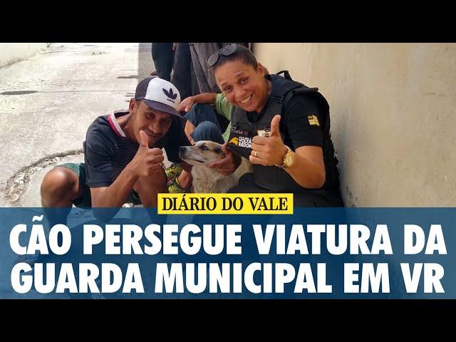 Cão persegue viatura da Guarda Municipal em Volta Redonda