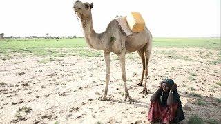 13歳のアイシャの1日~水を得るために~/日本ユニセフ協会 thumbnail