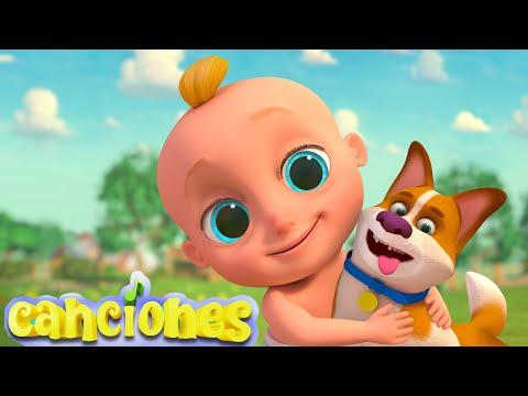 LooLoo – BINGO – Canciones Infantiles LooLoo – Cantece pentru copii in limba spaniola
