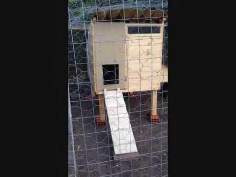 Costruire una casetta per galline youtube for Costruire recinto per cani