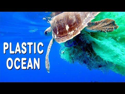 TURTLE RESCUE AT SEA & PLASTIC POLLUTION [Side Adventure #11]