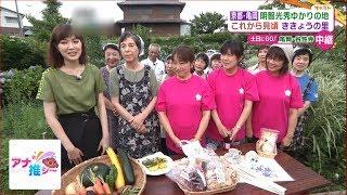 こんにちは、澤田有也佳です。 今回は京都の亀岡にあります、 「ききょ...